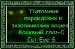 Добро пожаловать на сайт Кошачий глаз-С Cat-Eye-S
