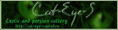 Экзотические короткошерстные и персидские кошки питомника Cat-Eye-S. Фото, родословные, котята на продажу.